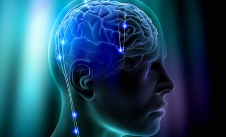 studiu-creierul-uman-se-micsoreaza-85265