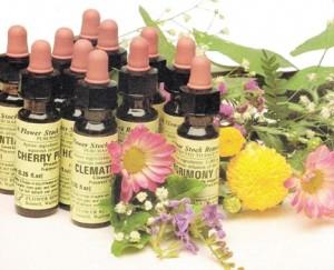 remedii-florale-bach