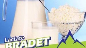 Branza-cu-E-coli-de-la-Lactate-Bradet--Un-lant-de-supermaketuri-retrage-toate-produsele-firmei